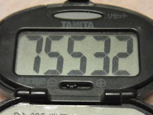 111127-050万歩計(S)