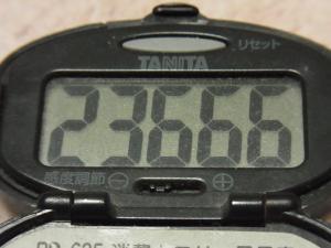 111203-040万歩計(S)