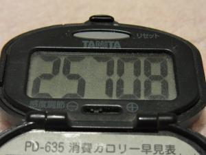 111210-050万歩計(S)