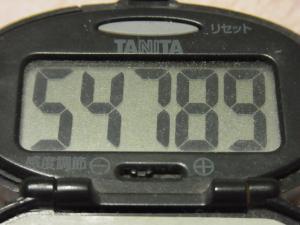 111211-040万歩計(S)