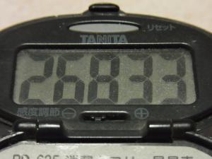 111217-050万歩計(S)