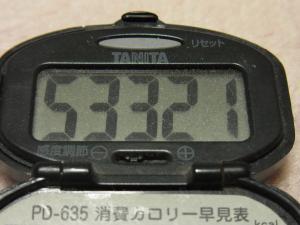 111218-070万歩計(S)