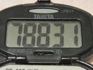 111225-050万歩計(S)