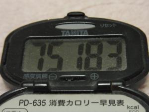 120102-017万歩計(S)