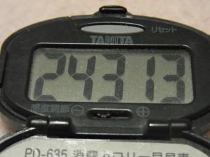 120107-050万歩計(S)