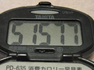 120108-060万歩計(S)