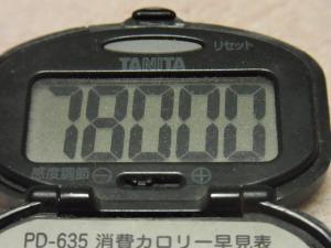 120109-050万歩計(S)