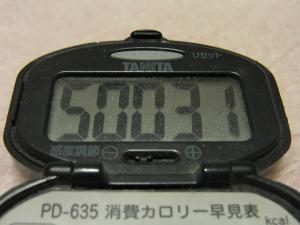 120115-060万歩計(S)