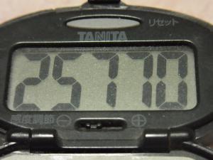 120121-060万歩計(S)