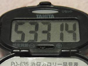 120122-030万歩計(S)