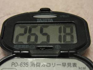 120128-060万歩計(S)