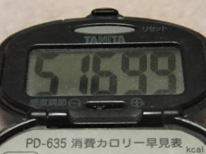 120129-030万歩計(S)