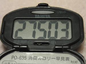 120204-040万歩計(S)