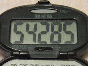 120205-050万歩計(S)
