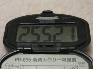 120209-050万歩計(S)