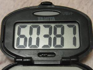120210-030万歩計(S)