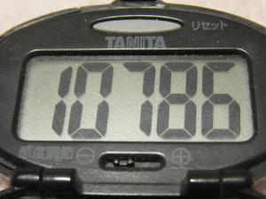 120212-050万歩計(S)