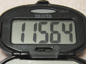 120215-060万歩計(S)