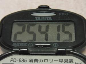 120219-060万歩計(S)