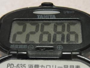 120225-040万歩計(S)