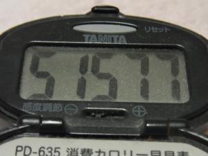 120226-060万歩計(S)