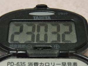 120303-013万歩計(S)