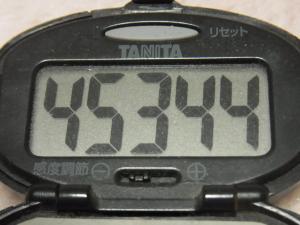 120304-050万歩計(S)
