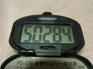 120311-040万歩計(S)