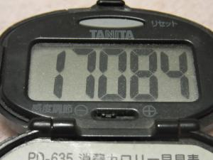 120317-050万歩計(S)