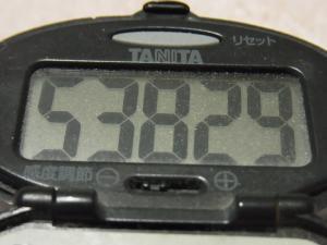 120318-070万歩計(S)