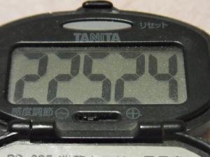 120320-060万歩計(S)