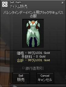 mabinogi_2008_02_05_001.jpg