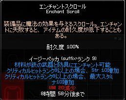 mabinogi_2008_03_07_008.jpg