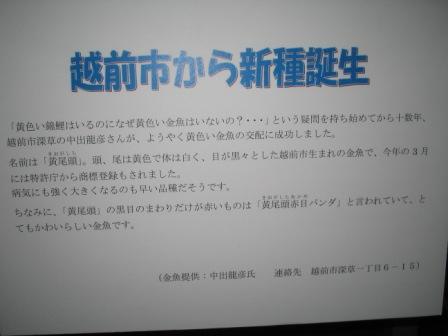 IMG_0008_20090723211022.jpg