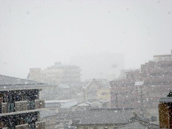 雪ですだ。