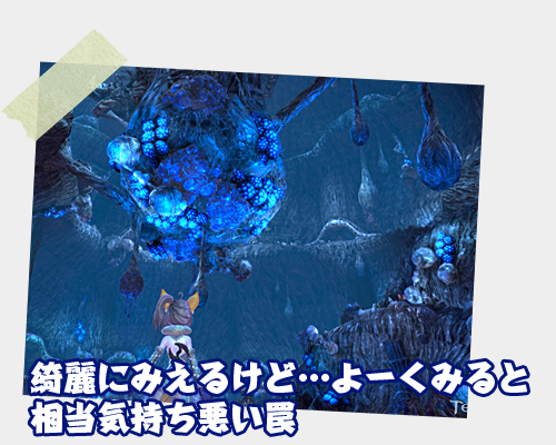C-_Documents-and-Settings_WS-IT08_デスクトップ_TERA_写真風