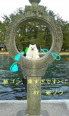 20080402智恵の輪灯篭