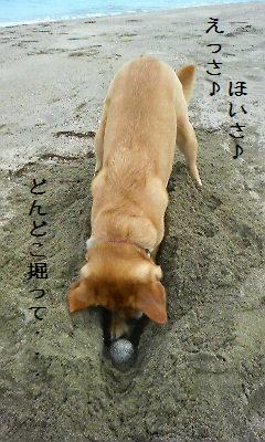 20080409可憐・竹野9