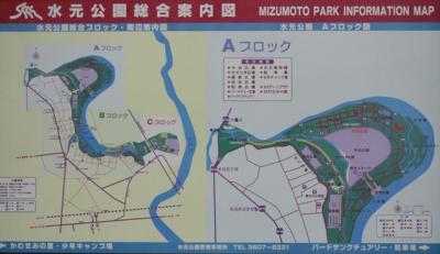 水元公園案内図