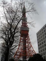 tokyo_T.jpg