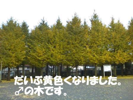 SN3F004200010001 コピー