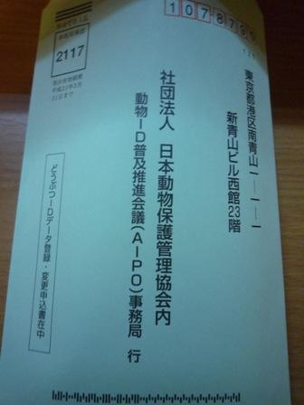 P1000821 コピー