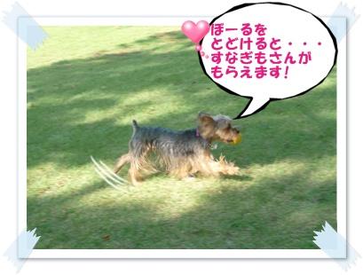 P1030844-cropあ