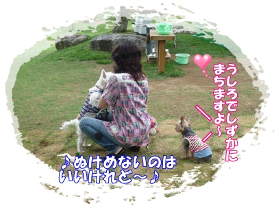 P1020663.jpg