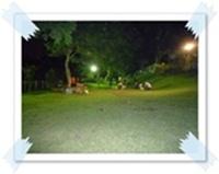 P1030577.jpg
