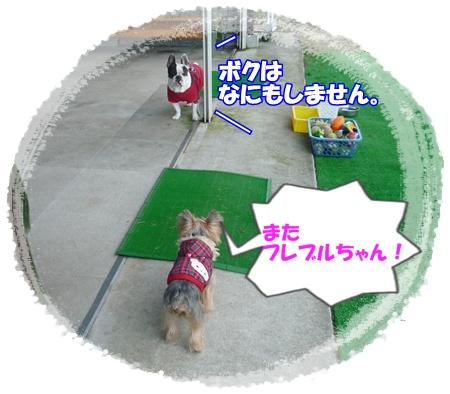 P1060043.jpg