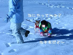 IMG_2900_1.jpg