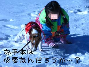 IMG_2902_1.jpg