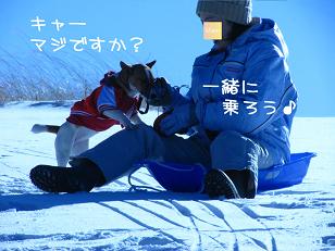 IMG_2908_1.jpg