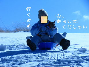 IMG_2911_1.jpg
